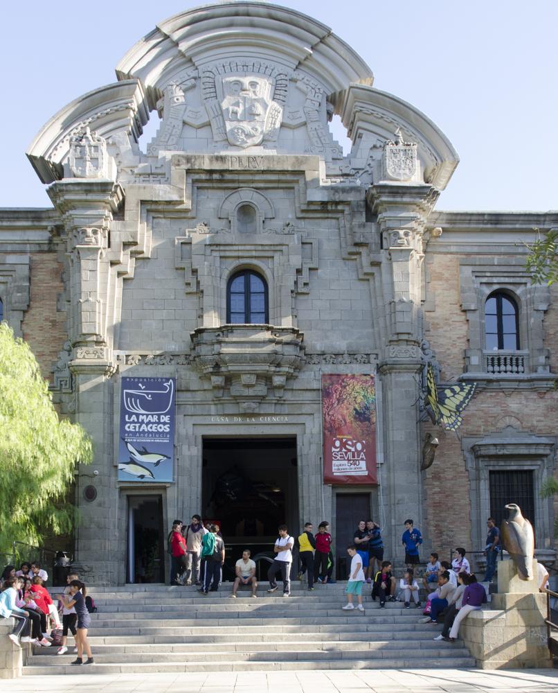 museo del flamenco sevilla