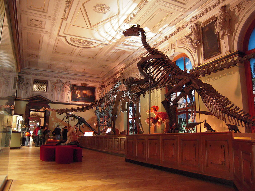 Top 10 mejores museos de Viena